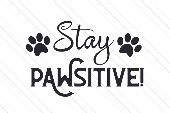 Stay PAWsitive! Cats Craft Cut File By Creative Fabrica Crafts