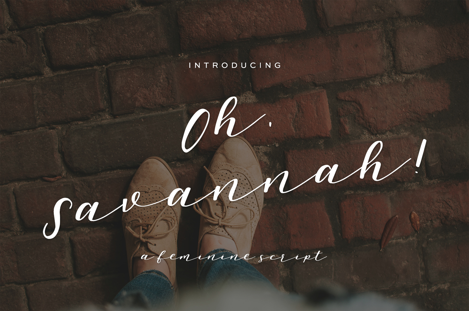 Print on Demand: Oh, Savannah! Script & Handwritten Font By BeckMcCormick