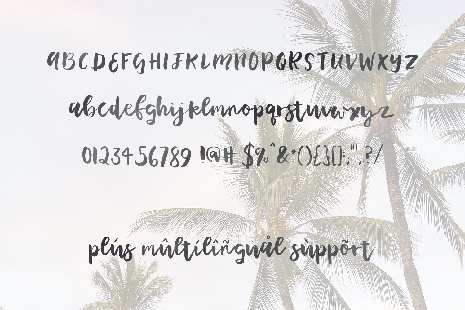 Print on Demand: Plumeria Script & Handwritten Font By BeckMcCormick - Image 5