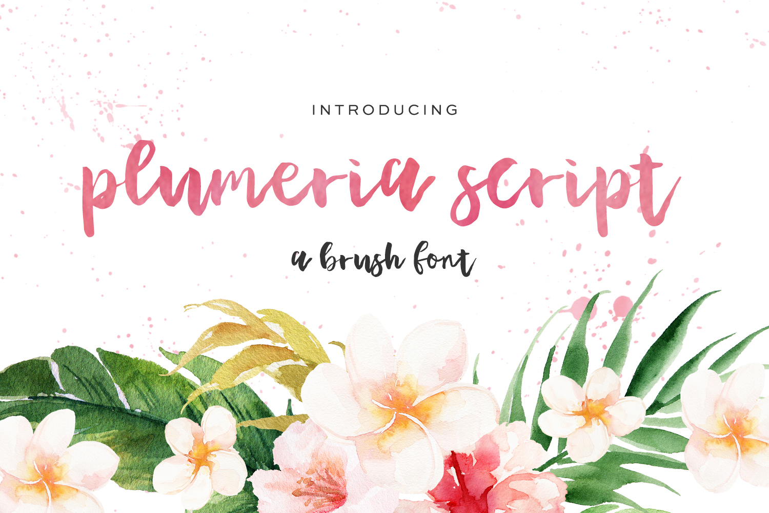Print on Demand: Plumeria Script & Handwritten Font By BeckMcCormick - Image 1