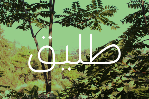 Print on Demand: Taleeq - Arabic Typeface Display Font By Mostafa El Abasiry