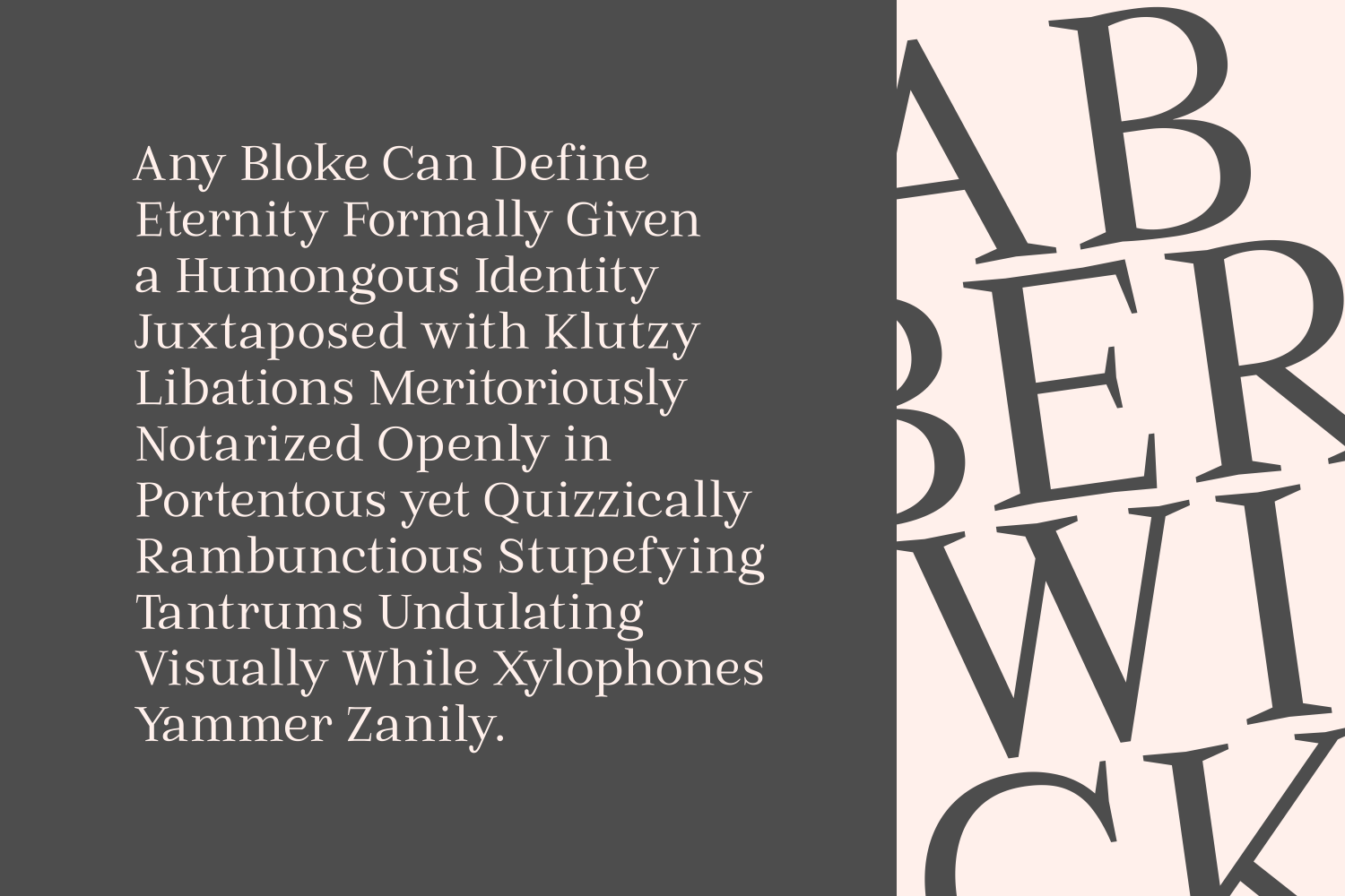 Print on Demand: Abberwick Serif Font By The Traveling Fox - Image 4