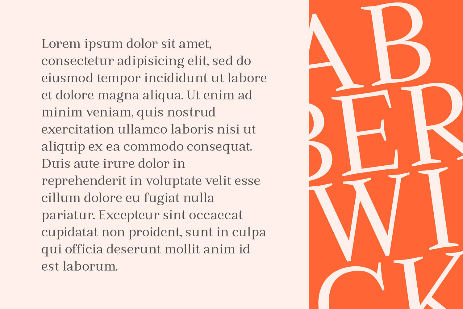 Print on Demand: Abberwick Serif Font By The Traveling Fox - Image 5