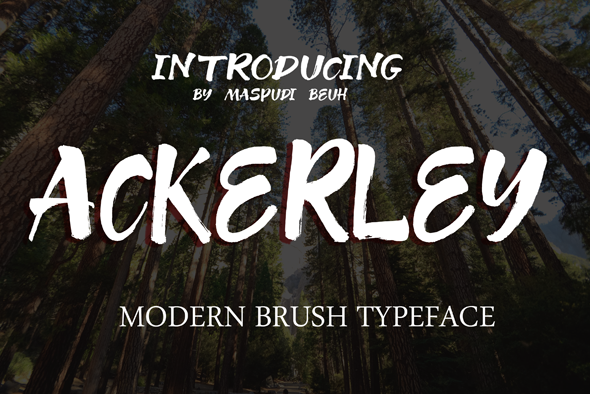 Print on Demand: Ackerey Display Font By pudiacut - Image 1