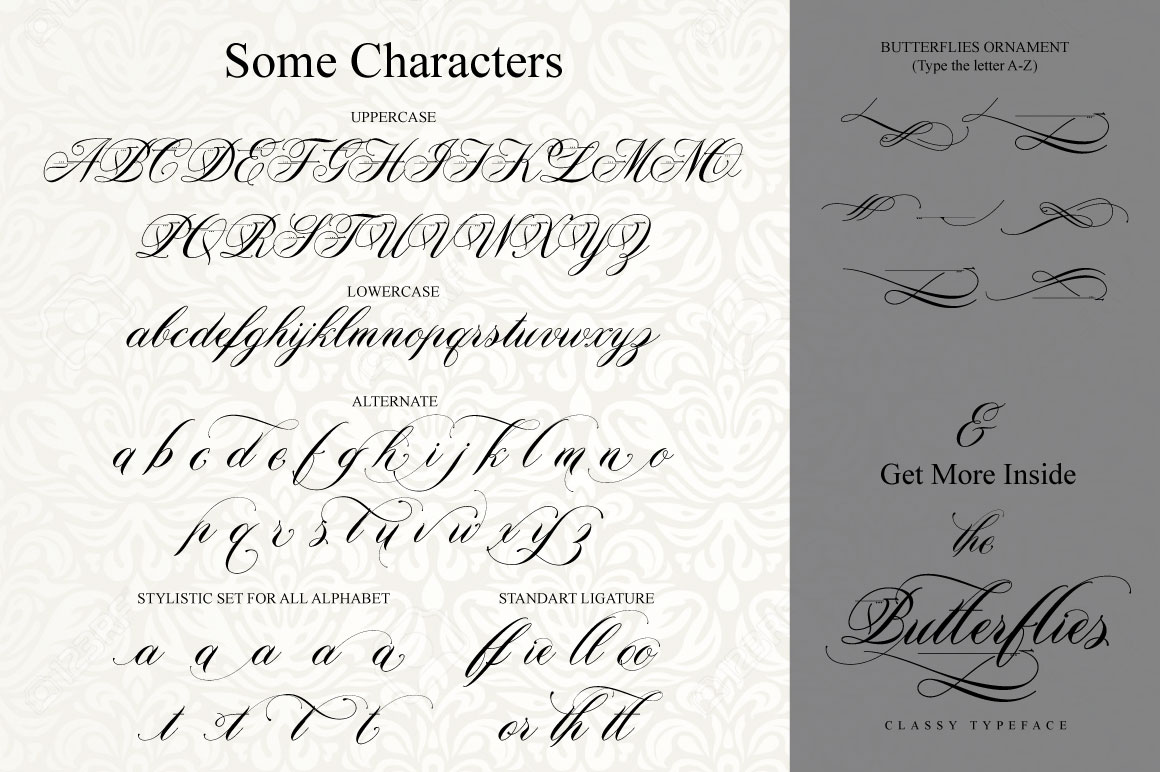 Print on Demand: Butterflies Script & Handwritten Font By beeart009 - Image 9