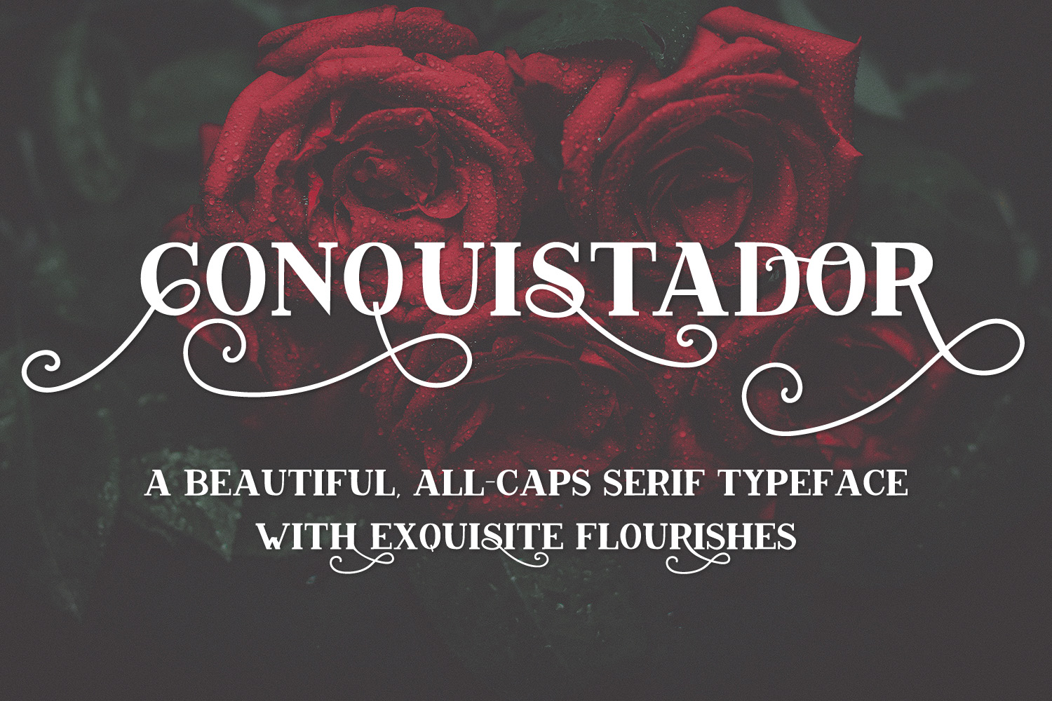 Print on Demand: Conquistador Serif Font By BeckMcCormick - Image 5