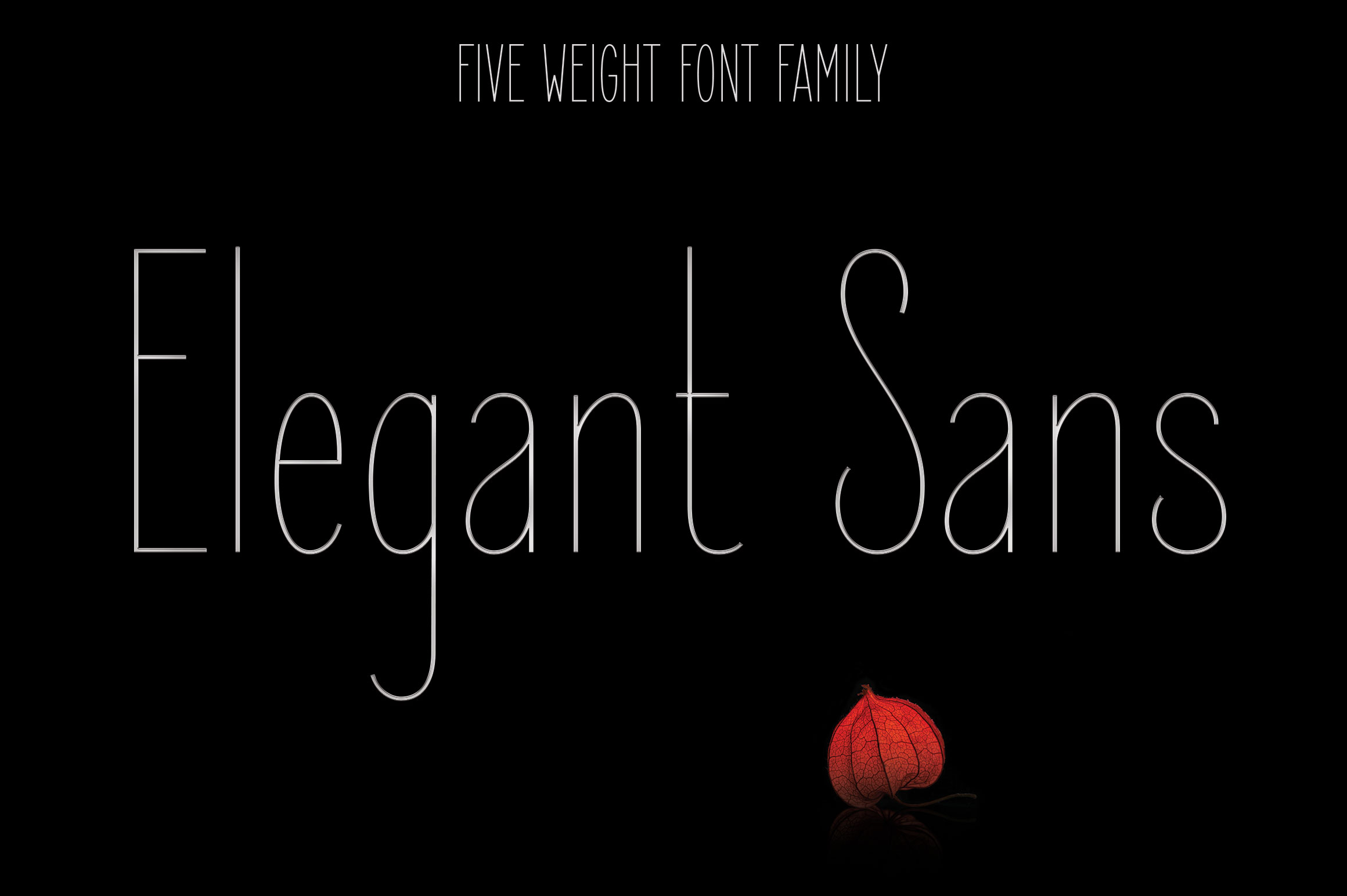 Print on Demand: Elegant Sans Sans Serif Font By Royaltype