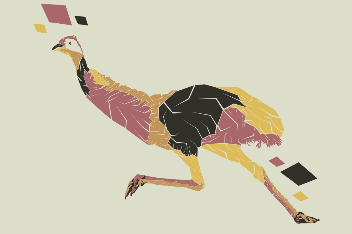 Print on Demand: Emu Pop Art Illustration Graphic Illustrations By Gblack Id