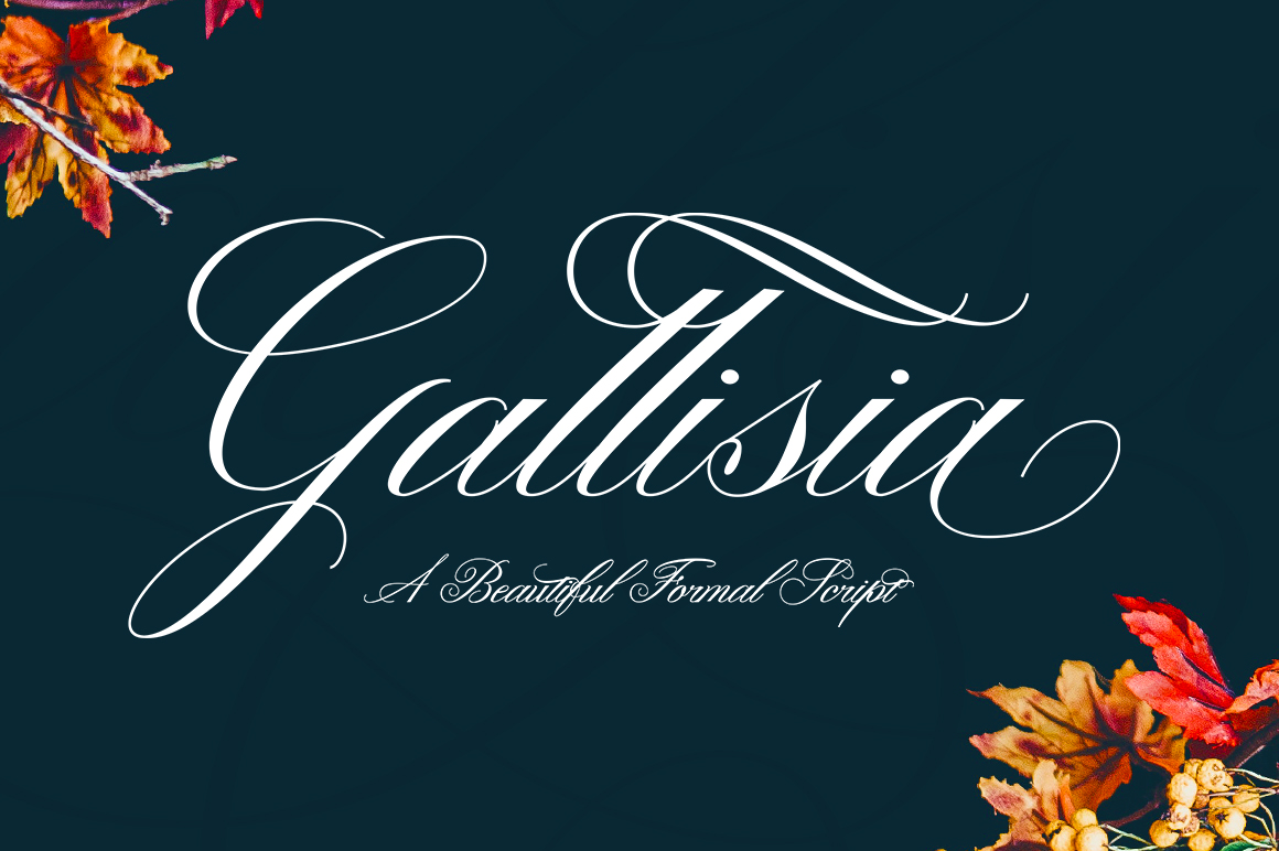 Print on Demand: Gallisia Script & Handwritten Font By Picatype Studio
