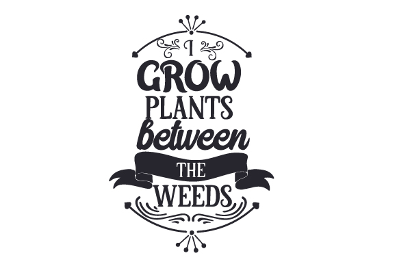 Download Free I Grow Plants Between The Weeds Svg Cut File By Creative Fabrica Crafts Creative Fabrica for Cricut Explore, Silhouette and other cutting machines.