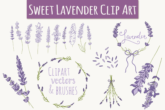 Lavender Set Graphic Illustrations By The Pen and Brush