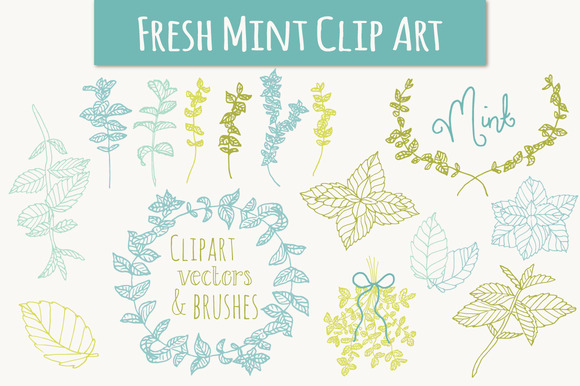 Mint Set Graphic Illustrations By The Pen and Brush