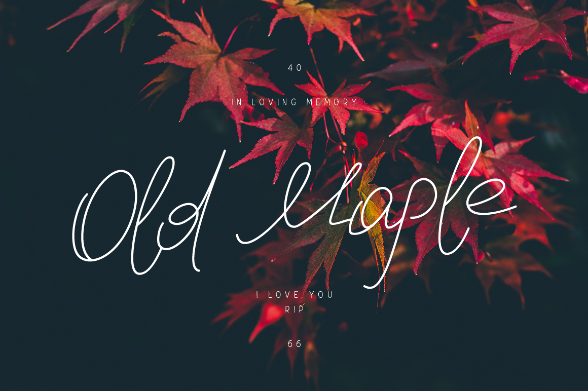 Print on Demand: Old Maple Script & Handwritten Font By ChekArt