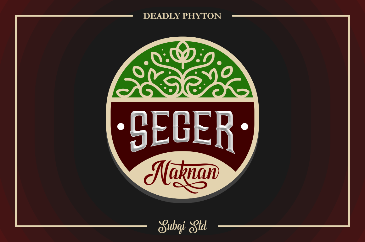 Phyton Font By Subqi Std Image 12