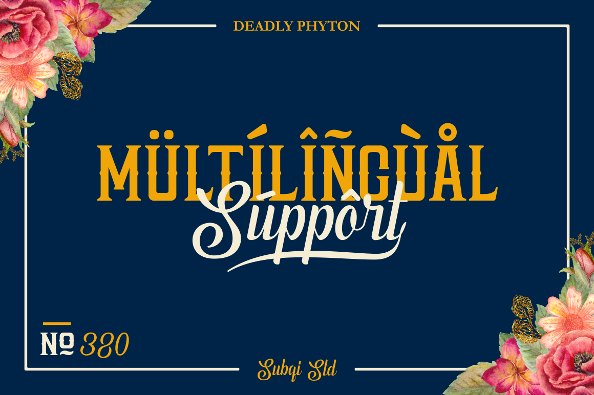 Phyton Font By Subqi Std Image 13