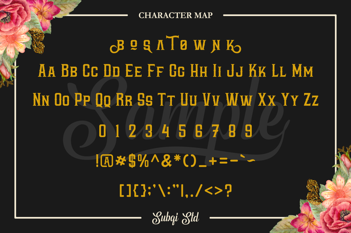 Phyton Font By Subqi Std Image 10