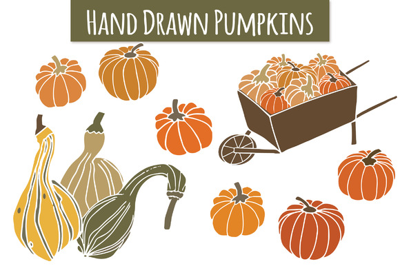 Pumpkins & Gourds Graphic Illustrations By The Pen and Brush