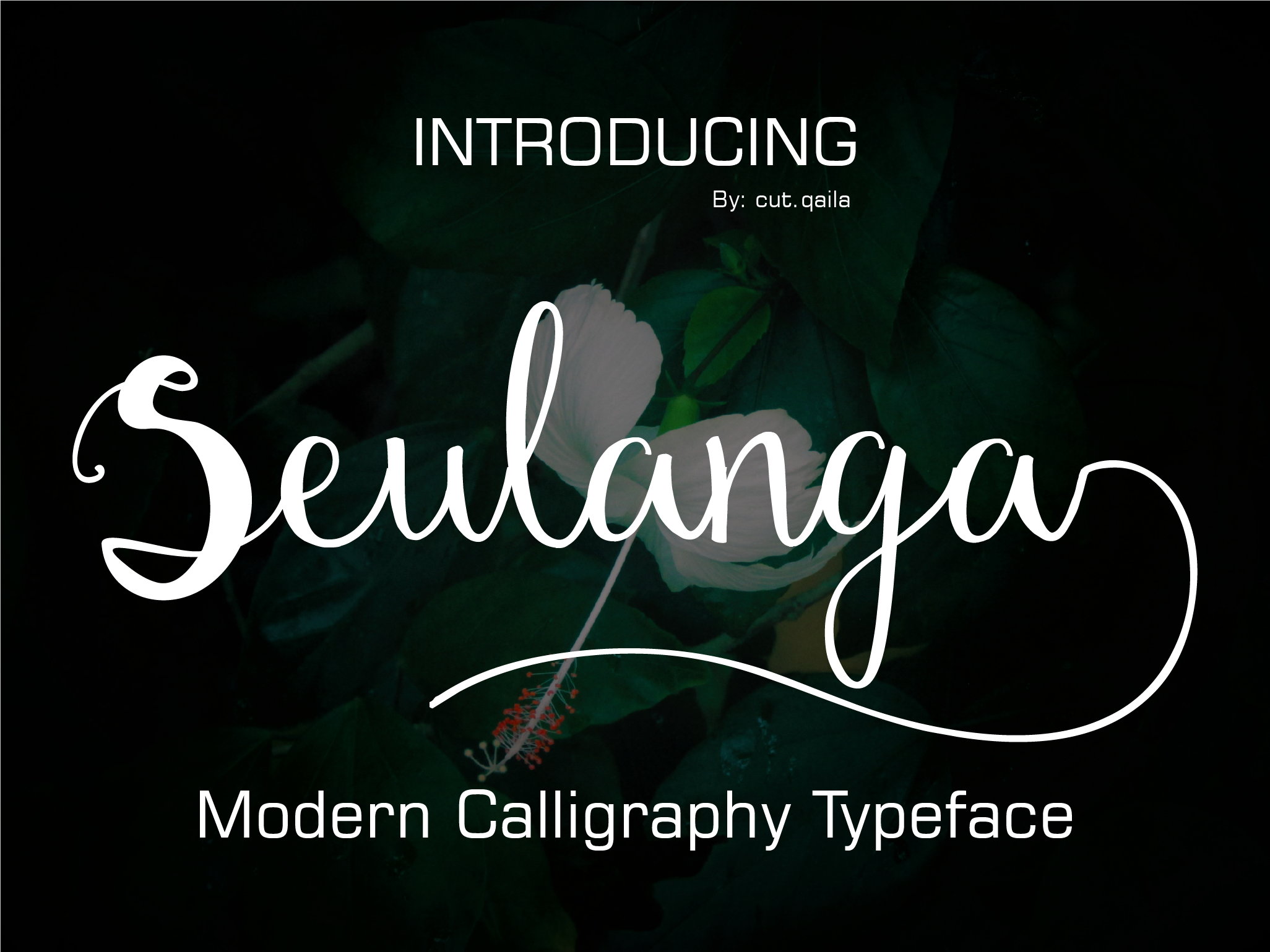 Print on Demand: Seulanga Script & Handwritten Font By ed.creative
