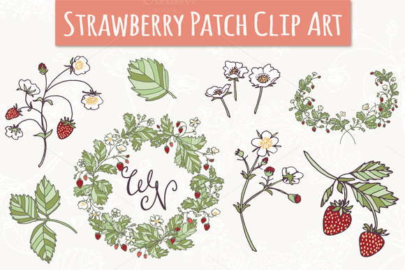 Strawberry Patch Set Graphic Illustrations By The Pen and Brush