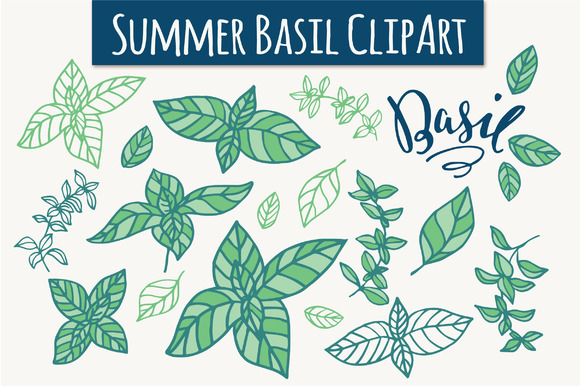 Summer Basil Clip Art Graphic Illustrations By The Pen and Brush