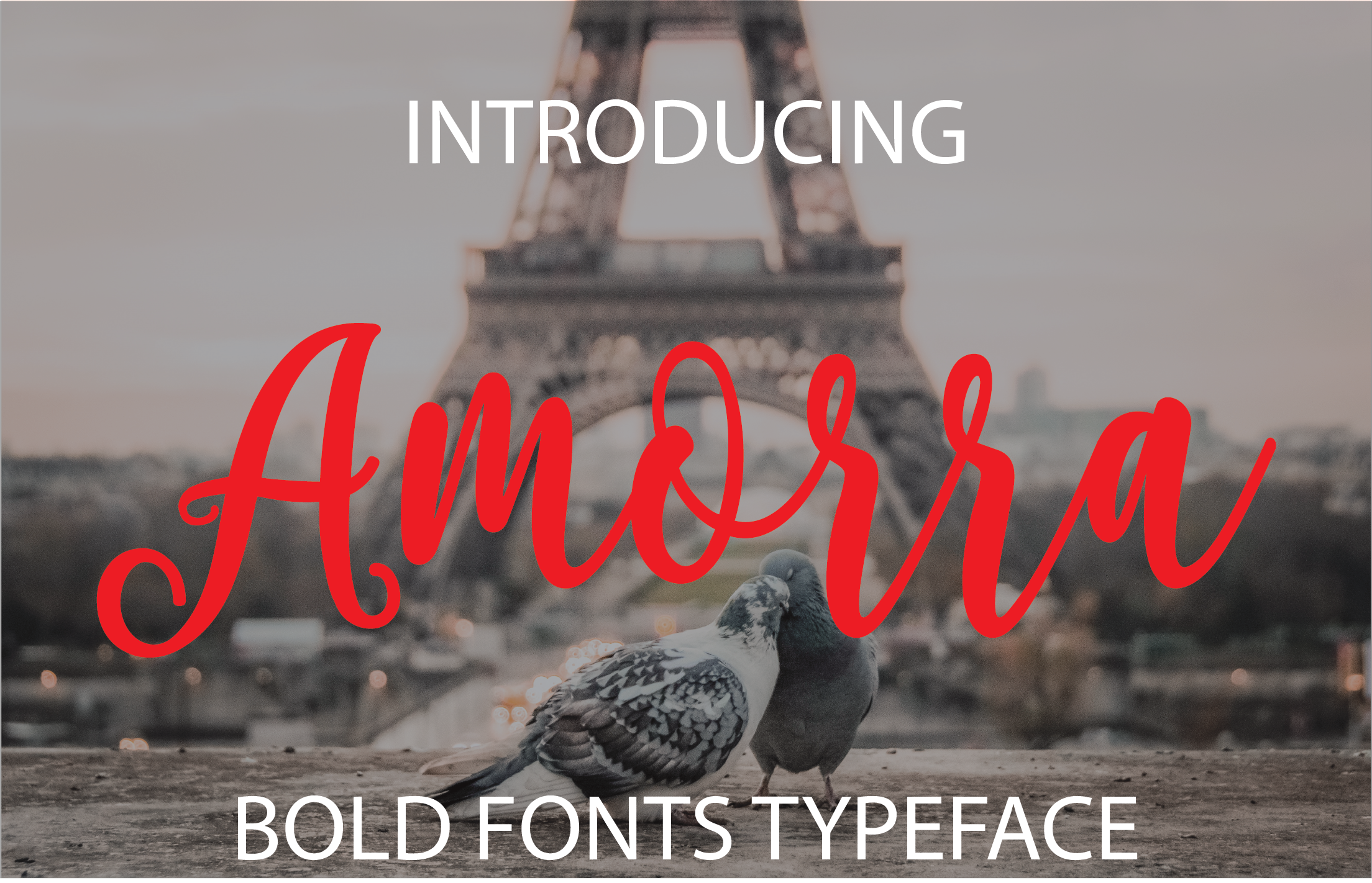 Print on Demand: Amorra Script & Handwritten Font By ed.creative