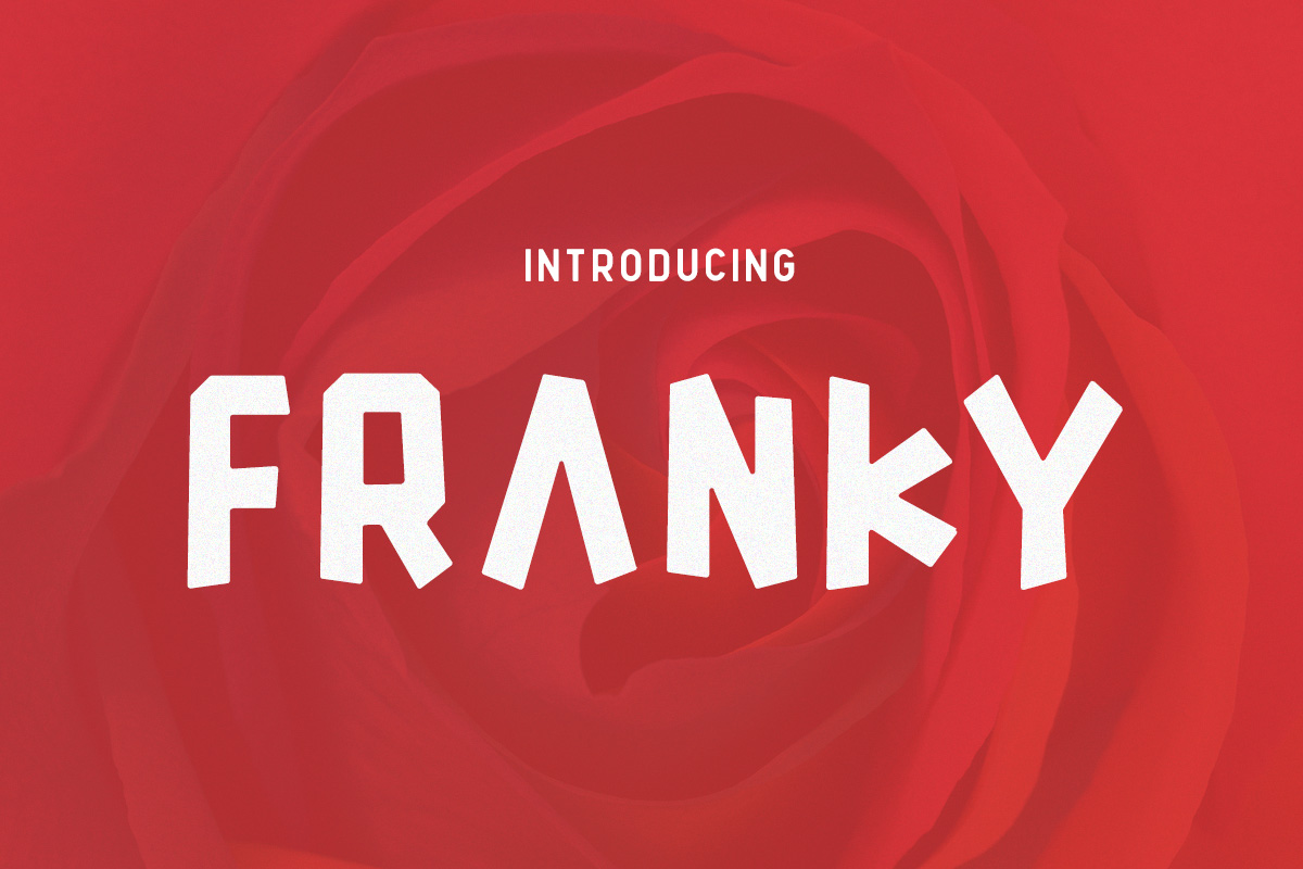 Print on Demand: Franky Display Font By Factory738