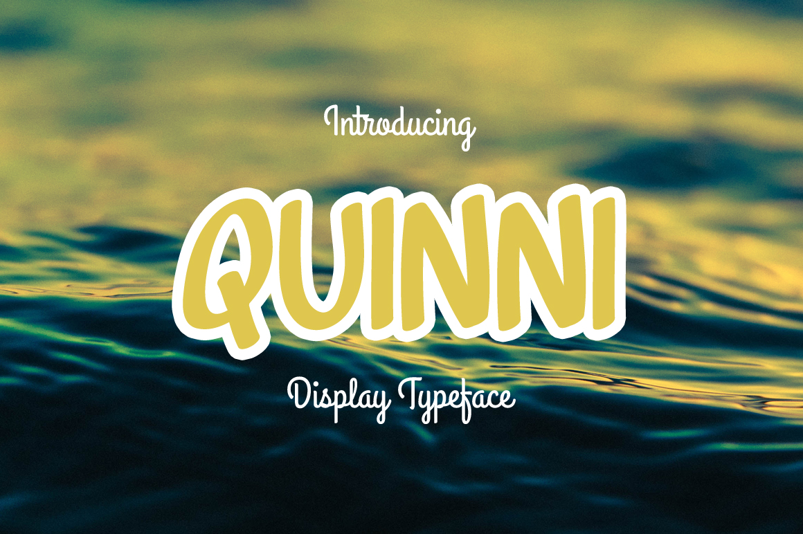 Quinni Display Font By Contour Fonts
