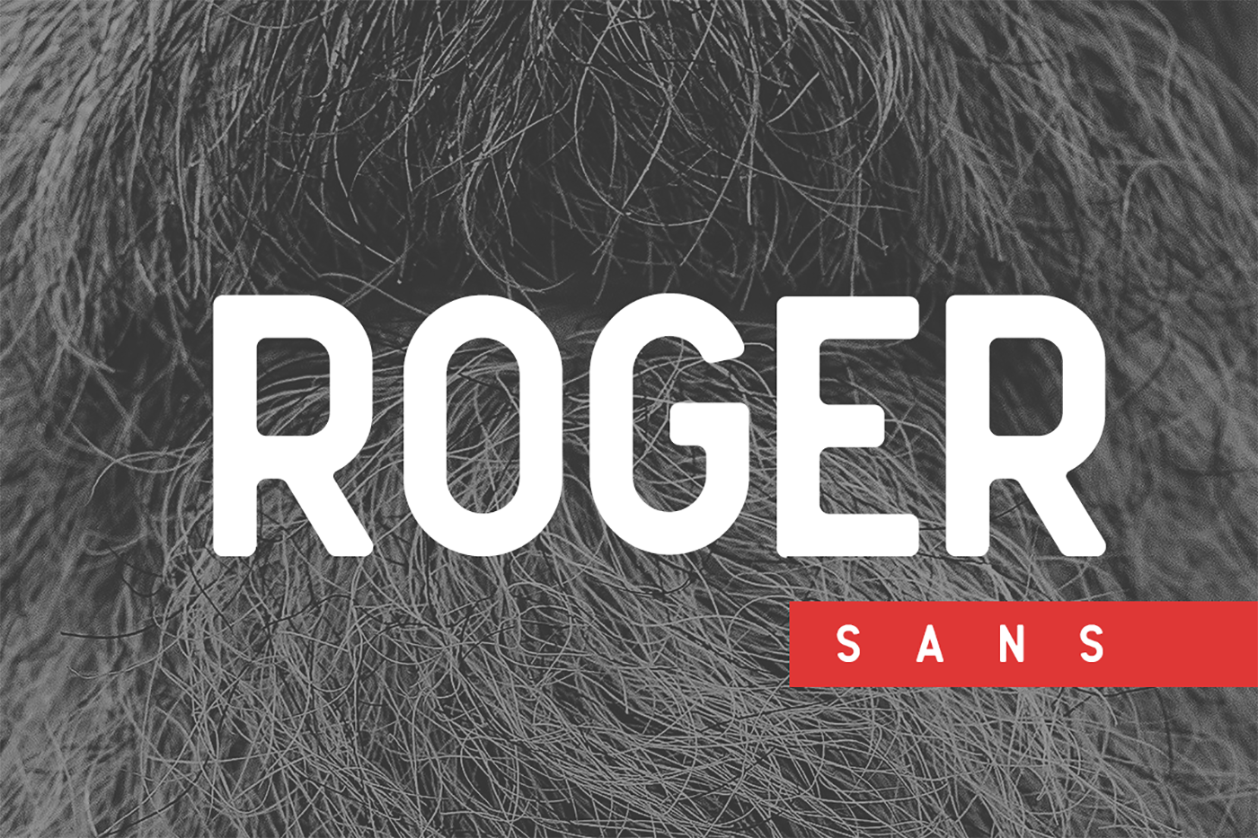 Print on Demand: Roger Sans Sans Serif Font By Factory738