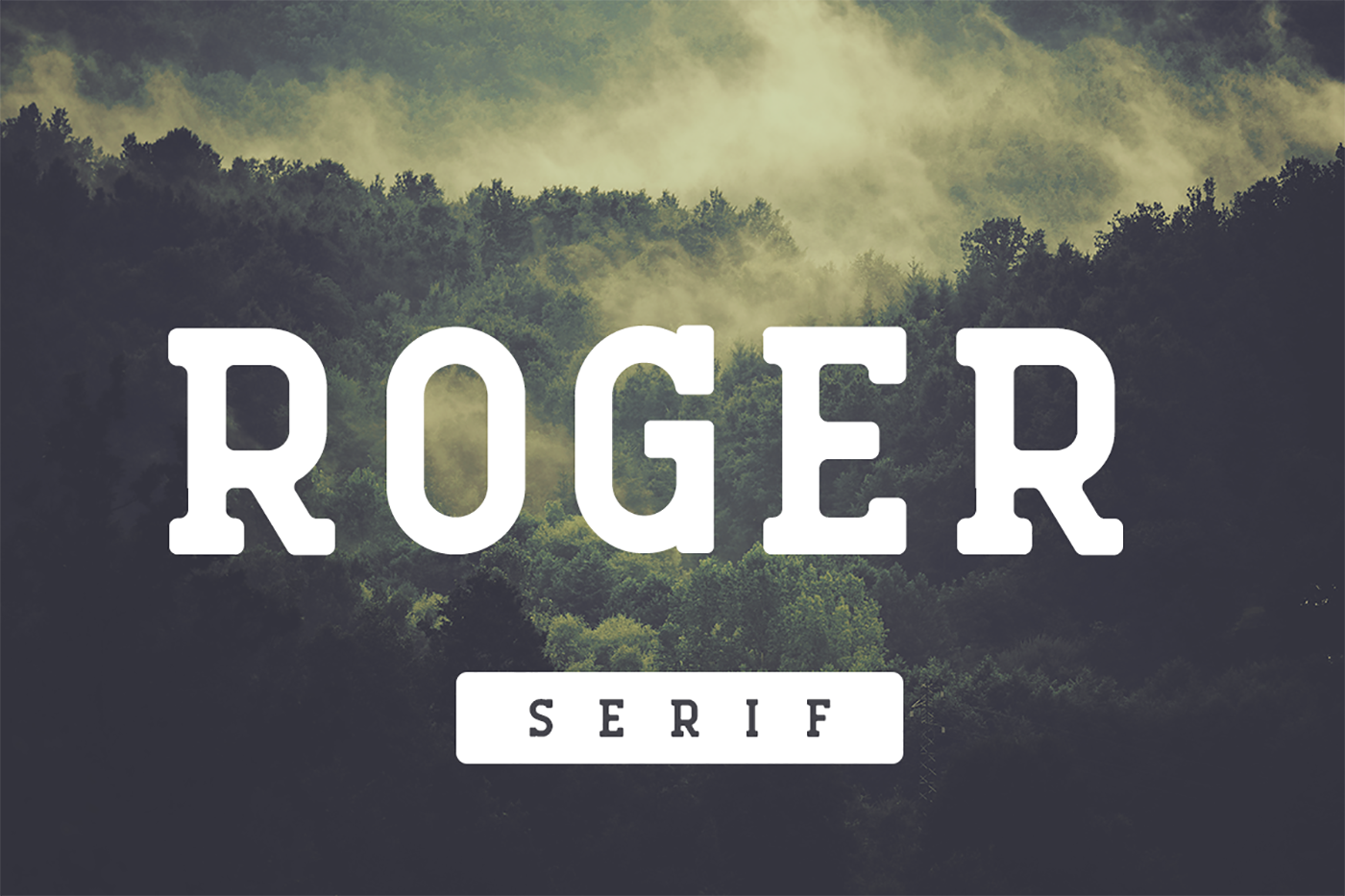 Print on Demand: Roger Serif Sans Serif Font By Factory738 - Image 1