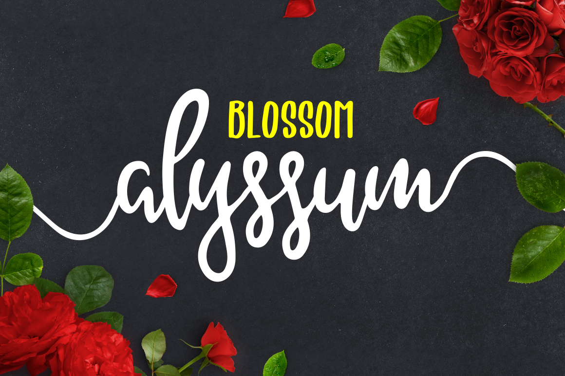 Print on Demand: Alyssum Blossom Script & Handwritten Font By bombastype