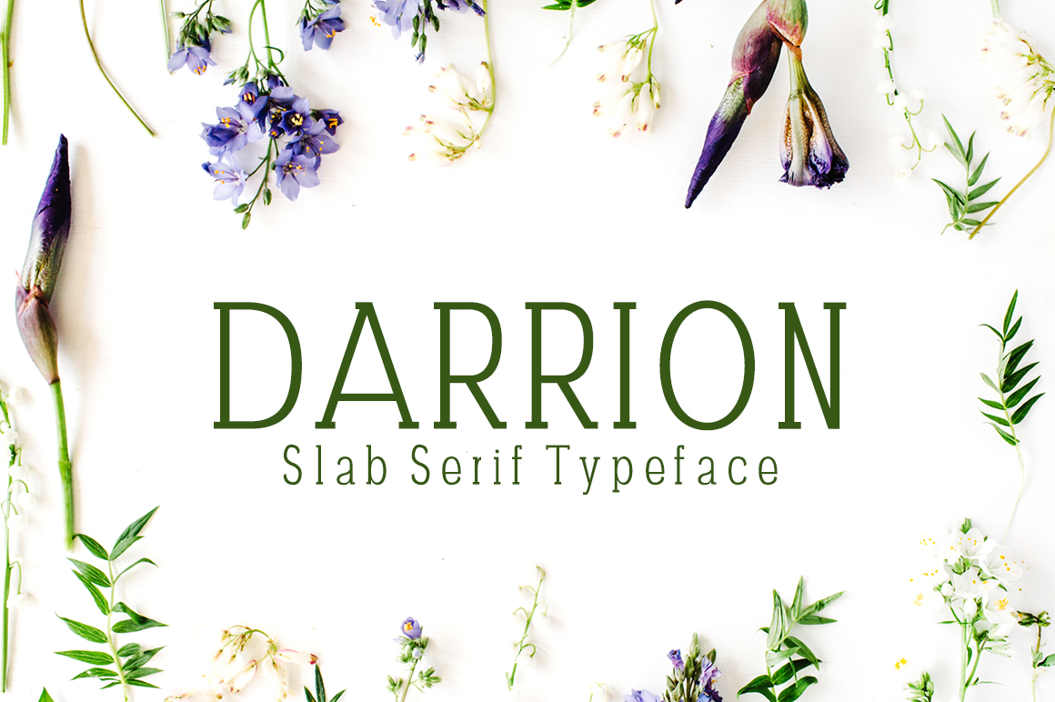 Print on Demand: Darrion Slab Serif Font By Creative Tacos