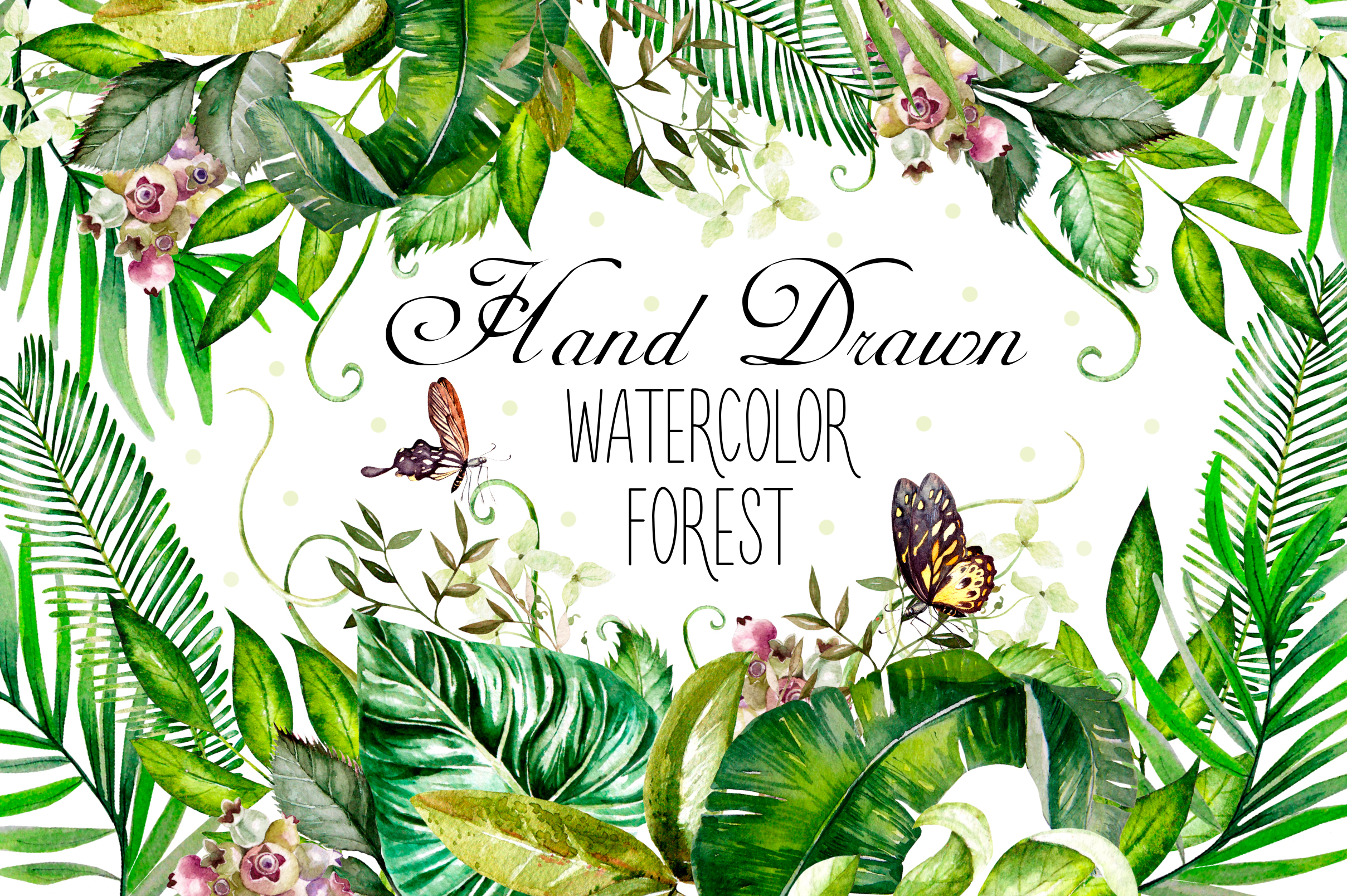 Hand Drawn Watercolor Forest Graphic Illustrations By Knopazyzy