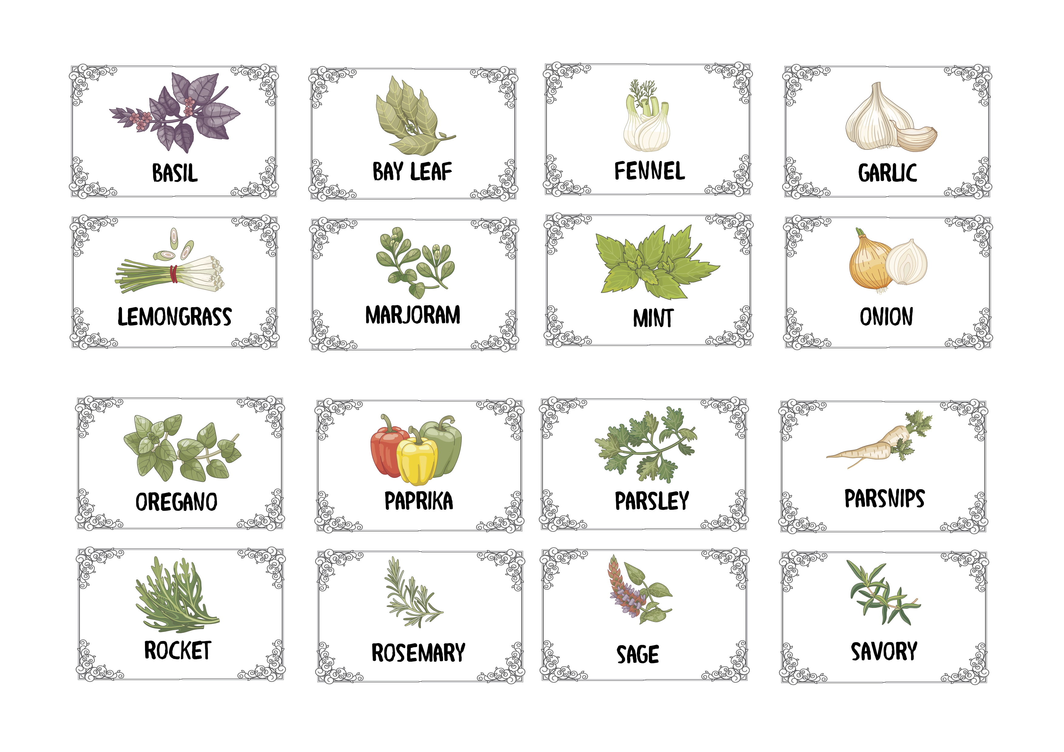 Print on Demand: Herbs & Spices -Illustrated & Plain Labels Gráfico Ilustraciones Por Angela H. Evans