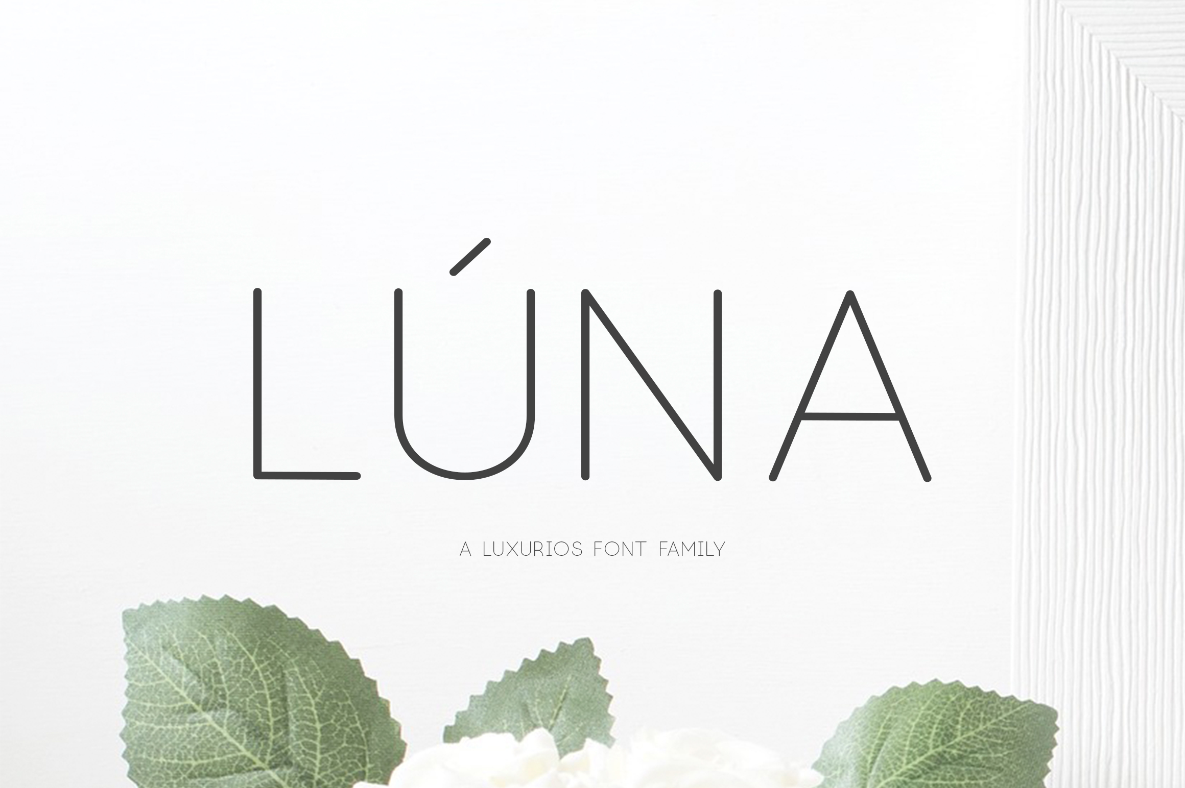 Print on Demand: Lúna Sans Serif Font By Graphicfresh