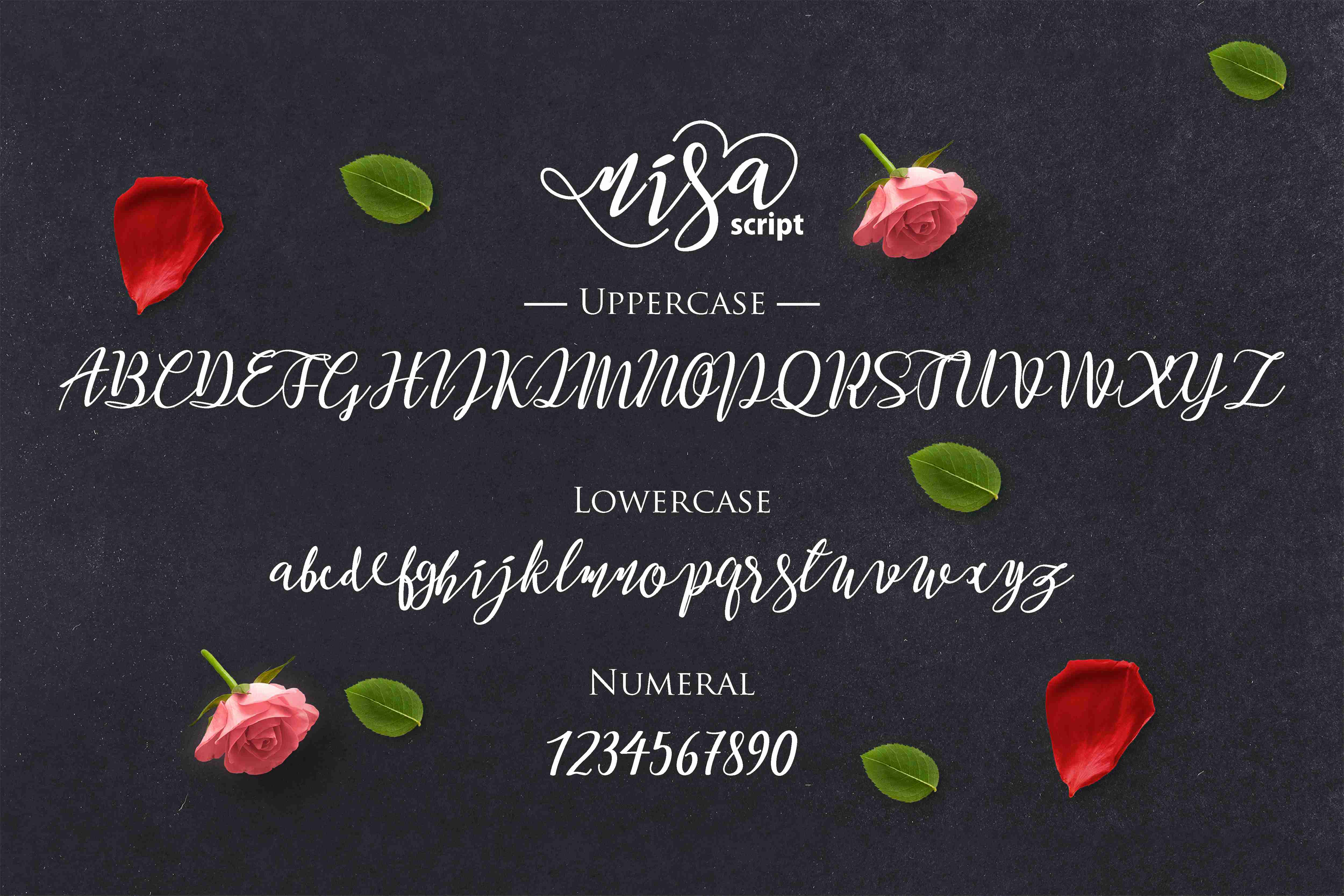 Nisa Font By No Gravity Type Image 6