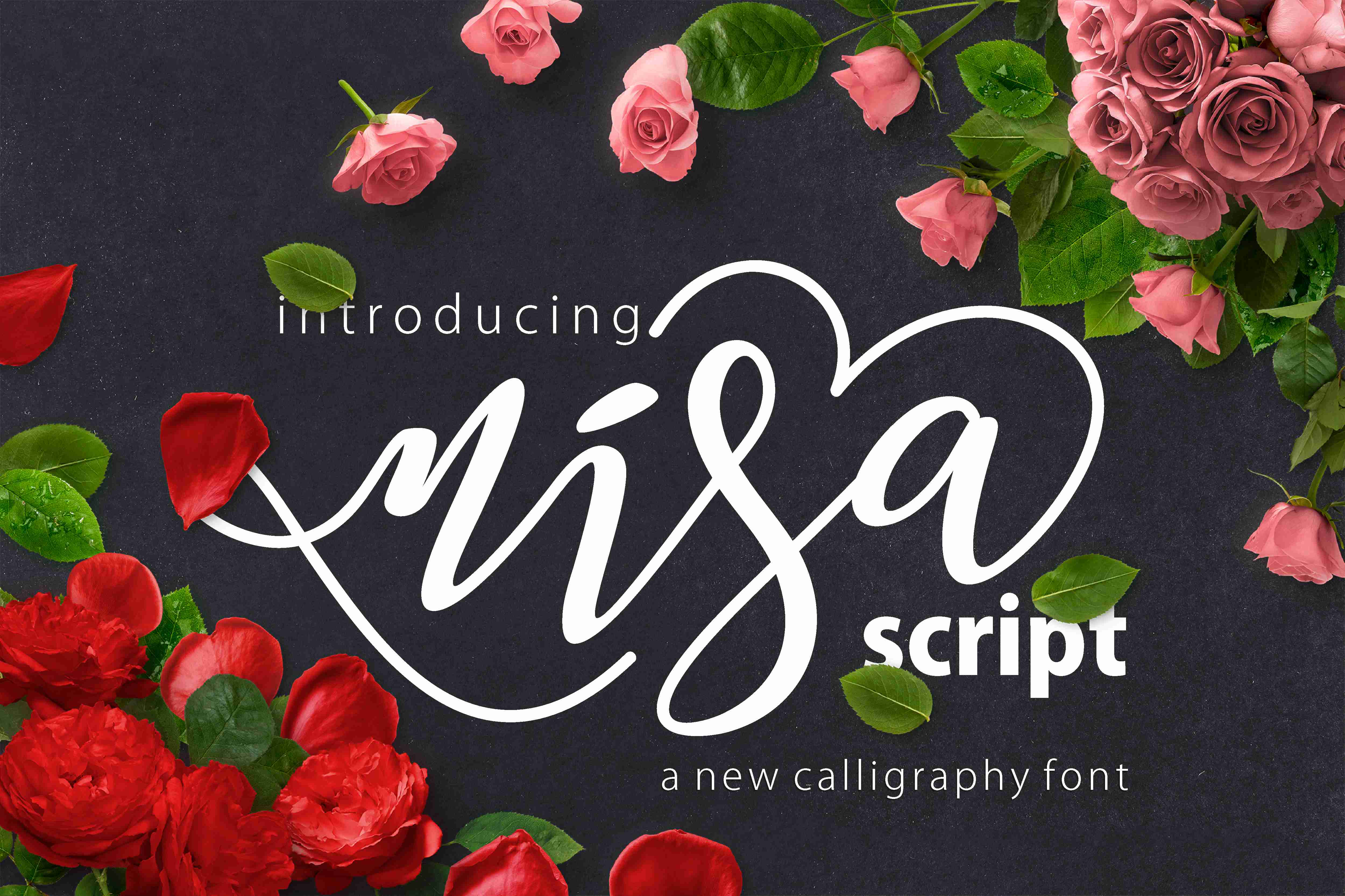 Nisa Font By No Gravity Type Image 1