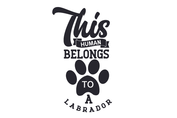 This Human Belongs to a Labrador Dogs Craft Cut File By Creative Fabrica Crafts