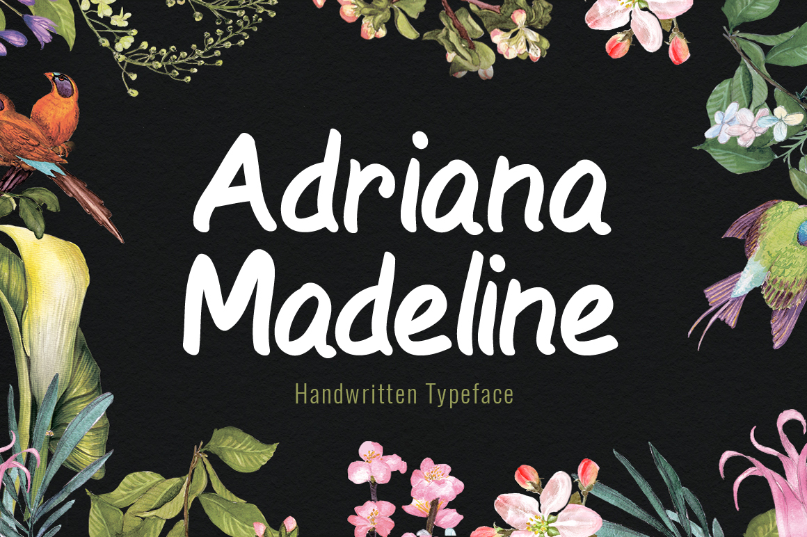 Print on Demand: Adriana Madeline Script & Handwritten Font By No Gravity Type - Image 1