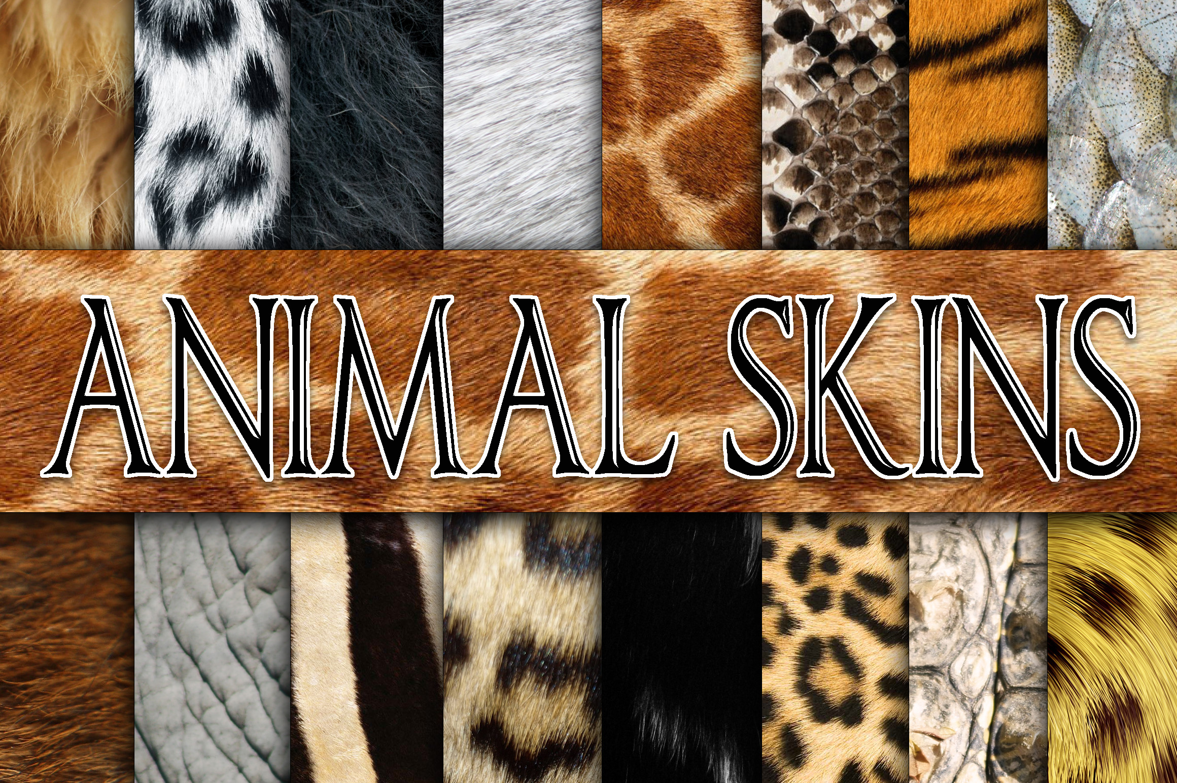 Animal Skin Digital Paper Textures Graphic Backgrounds By oldmarketdesigns