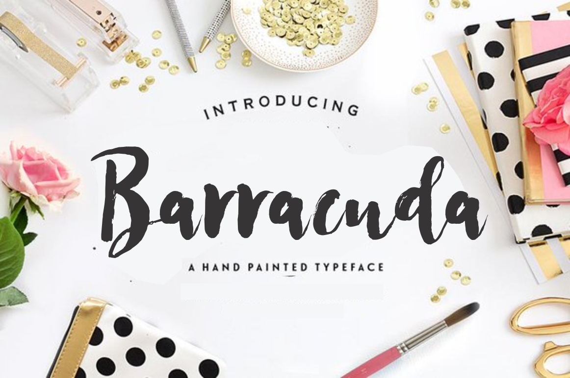 Barracuda Font By screen letter