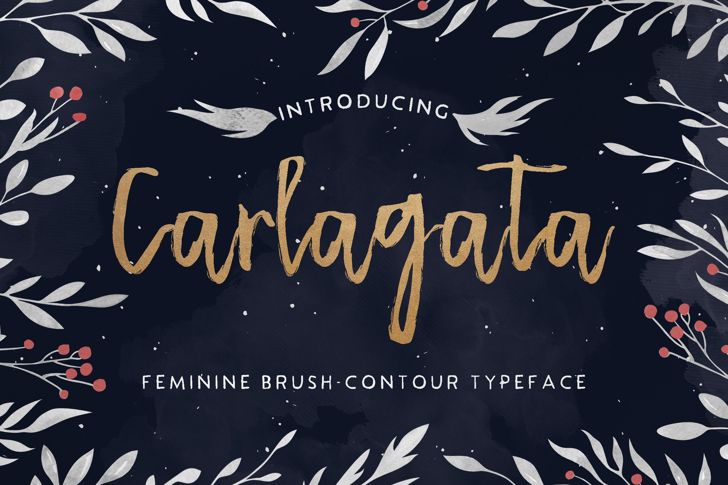 Print on Demand: Carlagata Script & Handwritten Font By Blue Robin Design Shop