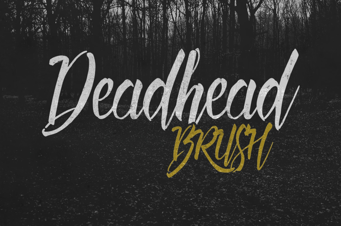 Print on Demand: Deadhead Brush Script & Handwritten Font By Fontdation