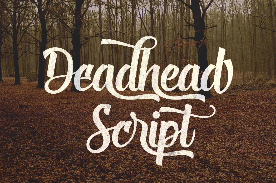 Print on Demand: Deadhead Script Script & Handwritten Font By Fontdation - Image 1