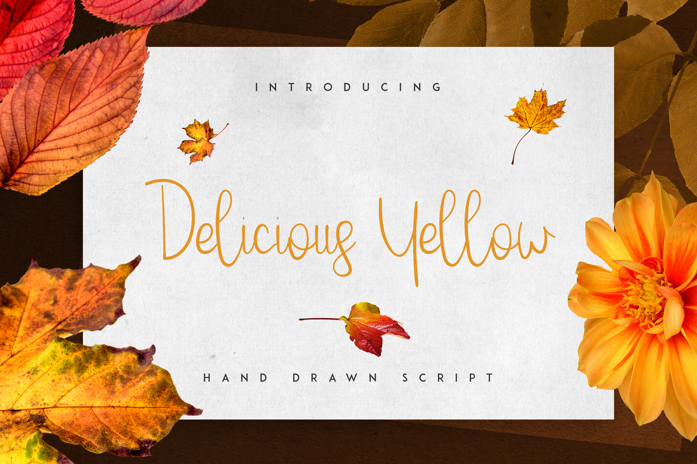 Delicious Yellow Script Font By vladfedotovv