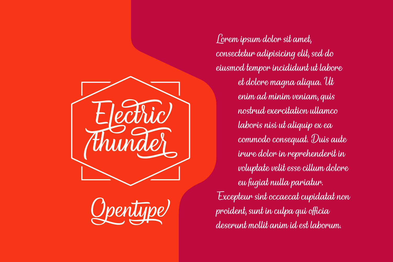 Print on Demand: Electric Thunder Script & Handwritten Font By The Traveling Fox - Image 4