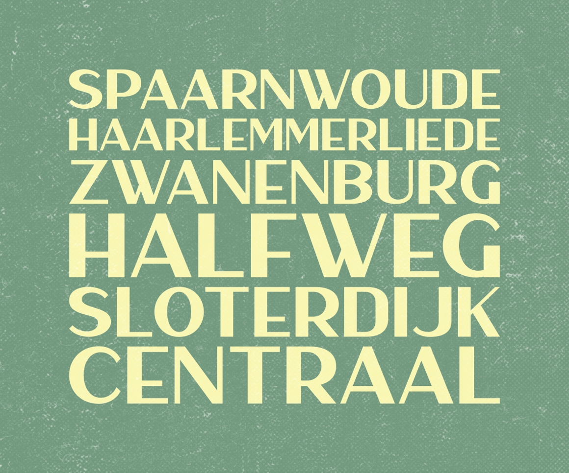 Print on Demand: Haarlem Sans Display Font By Fontdation - Image 9
