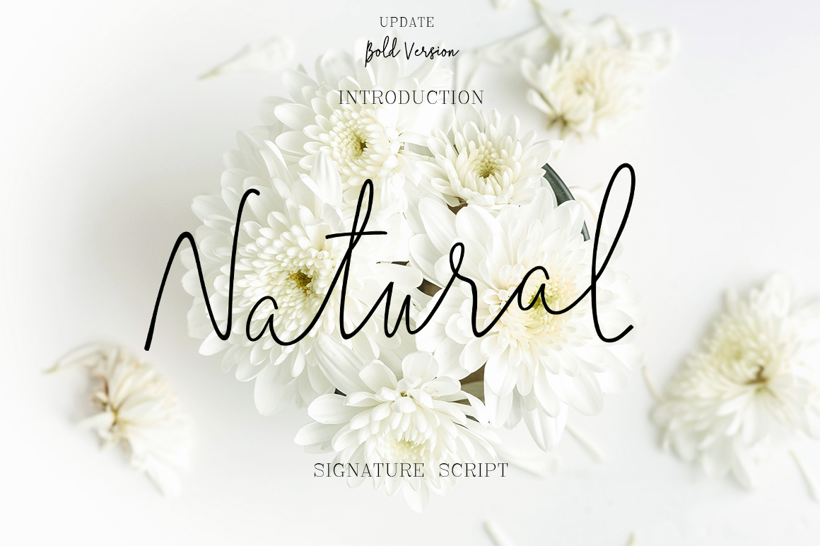 Natural Font By typehill