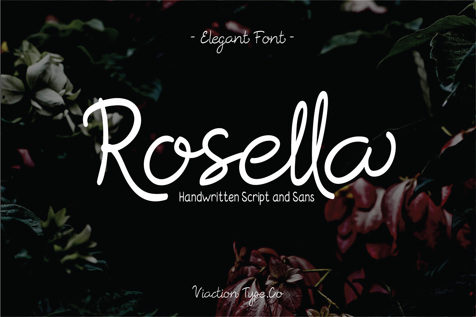 Print on Demand: Rosella Script & Handwritten Font By Viaction Type.Co