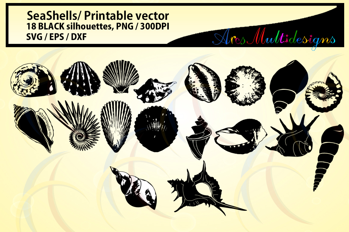 Print on Demand: Sea Shells Silhouette Graphic Crafts By Arcs Multidesigns