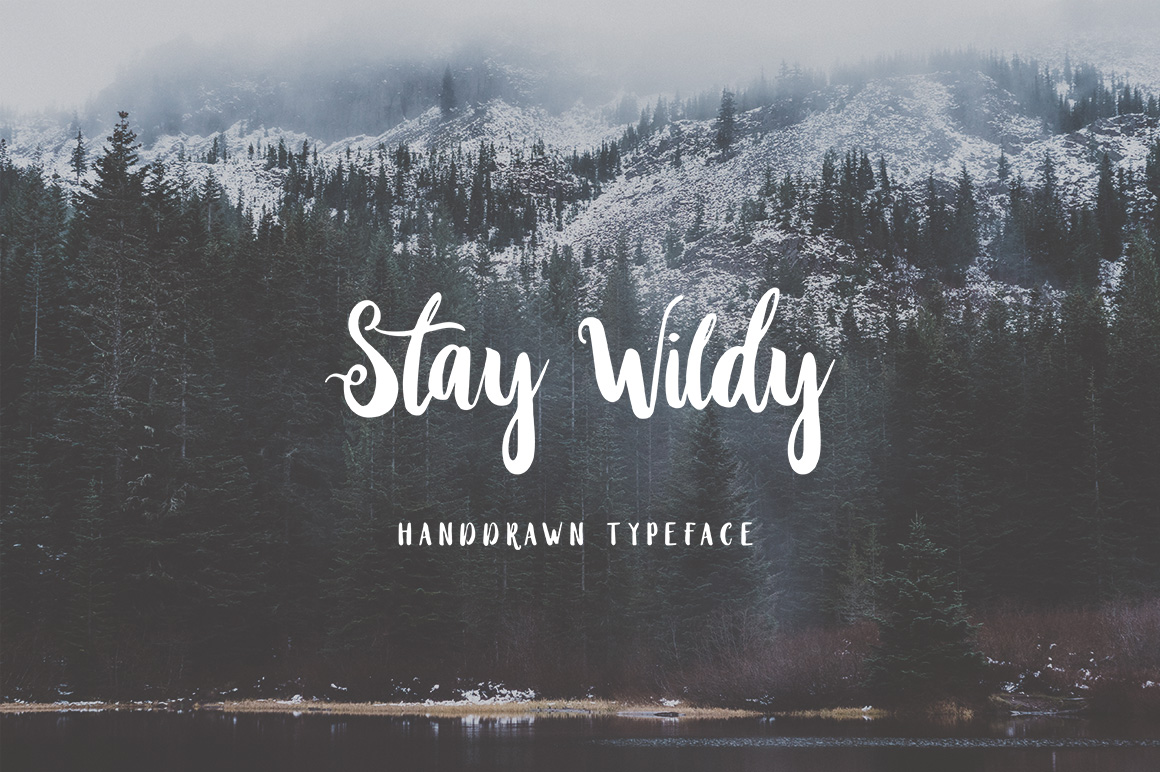 Print on Demand: Stay Wildy Script & Handwritten Font By Dikas Studio - Image 1